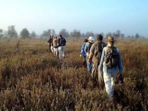Sweni walk at sunrise in the mist